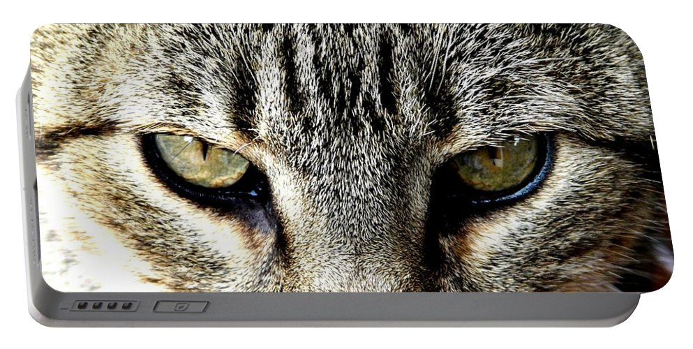 Cat Portable Battery Charger featuring the photograph Me...dangerous...never. by Valerie Ornstein
