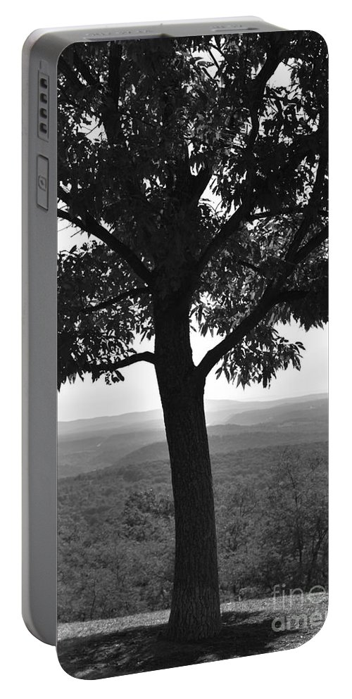Maryland Portable Battery Charger featuring the photograph Meditation Tree by Lisa Kleiner