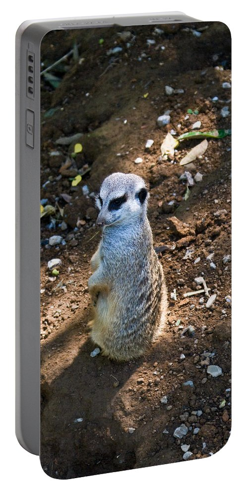 Portable Battery Charger featuring the photograph Meerkat Responding by Douglas Barnett