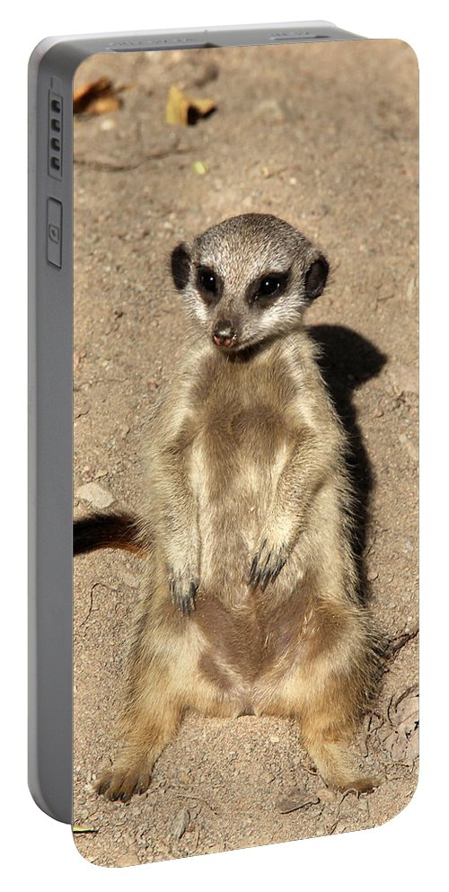 Meerkat Portable Battery Charger featuring the photograph Meerkat by Sergey Lukashin