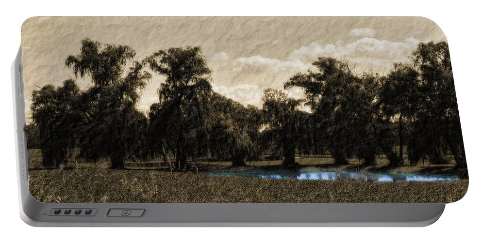 Landscape Portable Battery Charger featuring the photograph Meet Me By The Willows by Lauren Radke