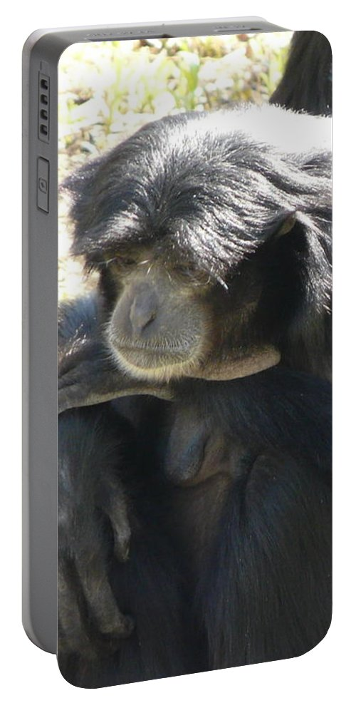 Animal Portable Battery Charger featuring the photograph Melancholy by Valerie Ornstein