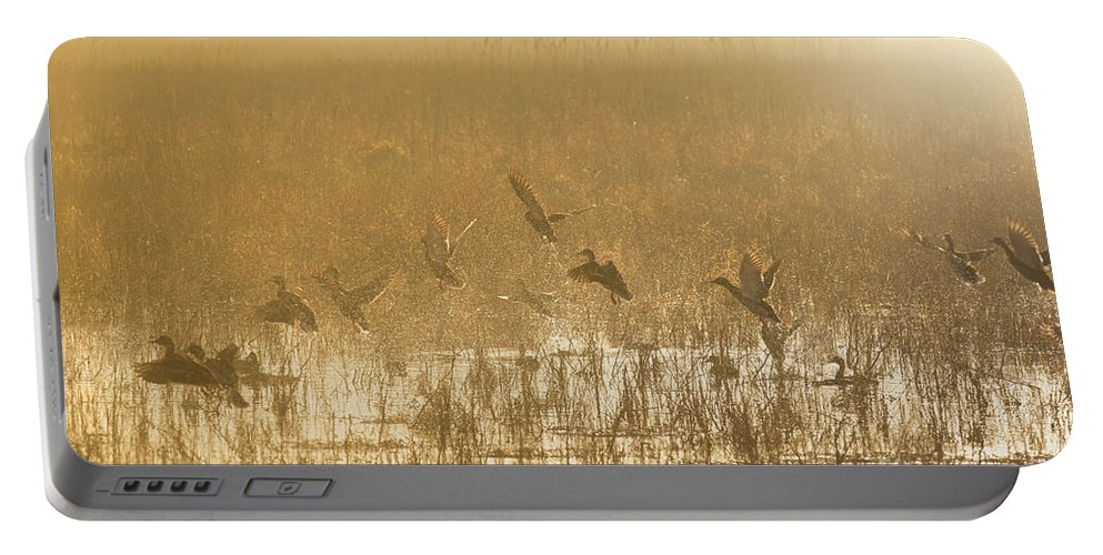 Ducks Portable Battery Charger featuring the photograph Metzgers Marsh In Fog by Charles Owens
