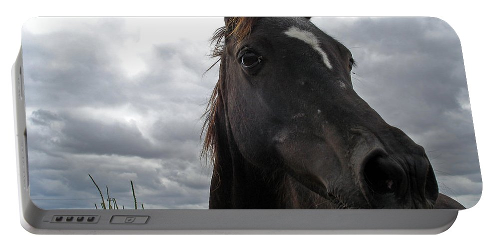 Black Beauty Portable Battery Charger featuring the photograph Midnight Melody by Susan Baker