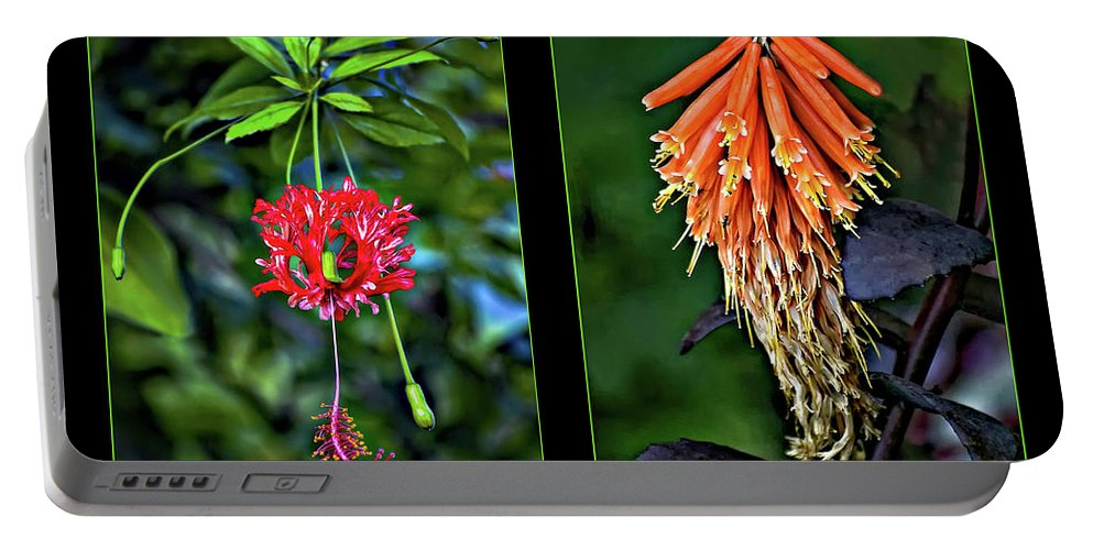 Flower Portable Battery Charger featuring the photograph Midsummer Dream Diptych by Steve Harrington