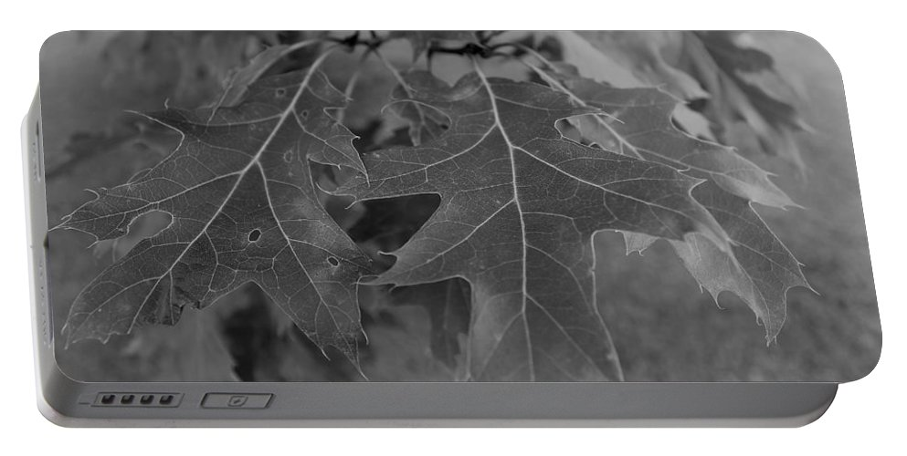 Portable Battery Charger featuring the photograph Mighty Oak by John Bichler