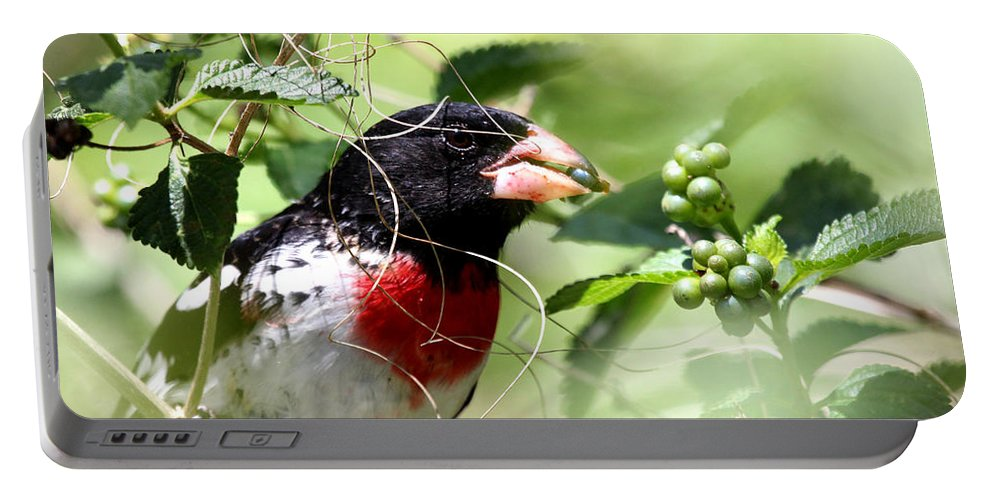 Nature Portable Battery Charger featuring the photograph Migration Muchies by Bibzie Priori