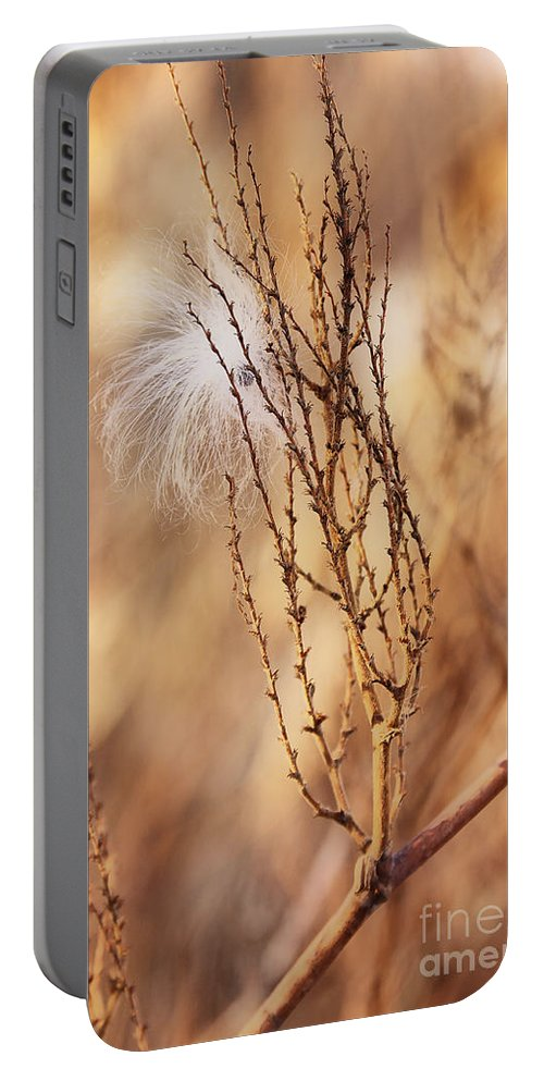 Milkweed Portable Battery Charger featuring the photograph Milkweed In The Breeze by Deborah Benoit