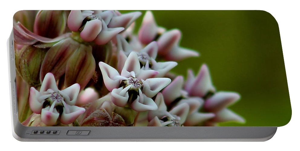 Flower Portable Battery Charger featuring the photograph Milkweed Pink by Roger Becker
