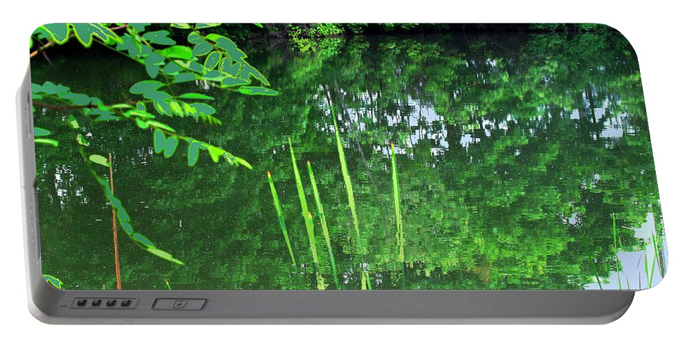 Black Creek Portable Battery Charger featuring the photograph Mill Pond Reflections by Ian MacDonald