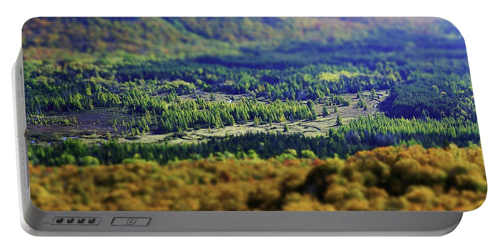 Adirondacks Portable Battery Charger featuring the photograph Mini Meadow by Brad Wenskoski