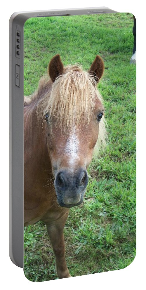 Miniture Portable Battery Charger featuring the painting Miniature Horse by Eric Schiabor