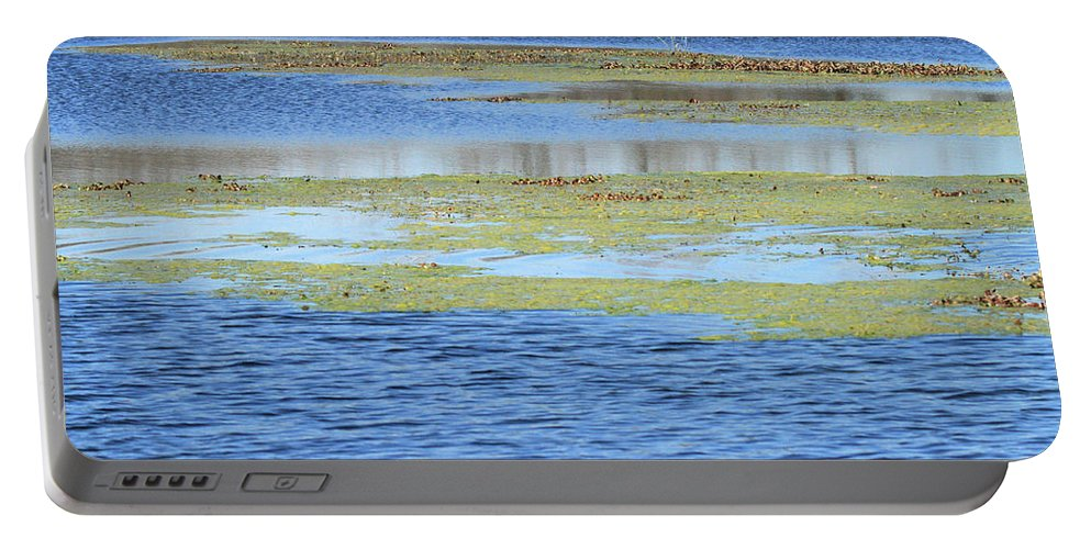 Texas Wetland Portable Battery Charger featuring the photograph Brazos Bend Wetland Abstract by Katrina Lau