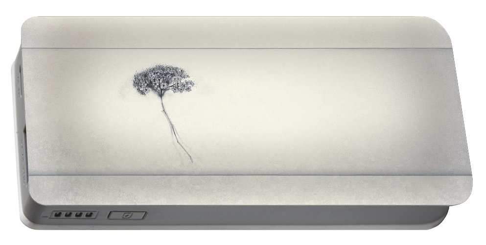 Flower Portable Battery Charger featuring the photograph Miracle Of A Single Flower by Scott Norris
