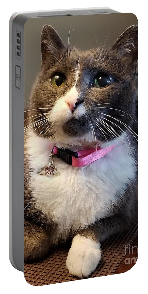 Portable Battery Charger featuring the photograph Miss Boots by Donald Wilkerson