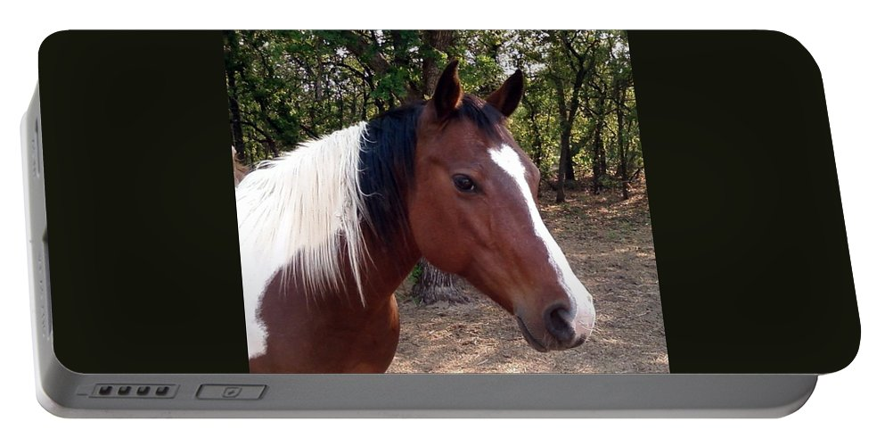 Paint Horse Portable Battery Charger featuring the photograph Missy 1 by Cindy New