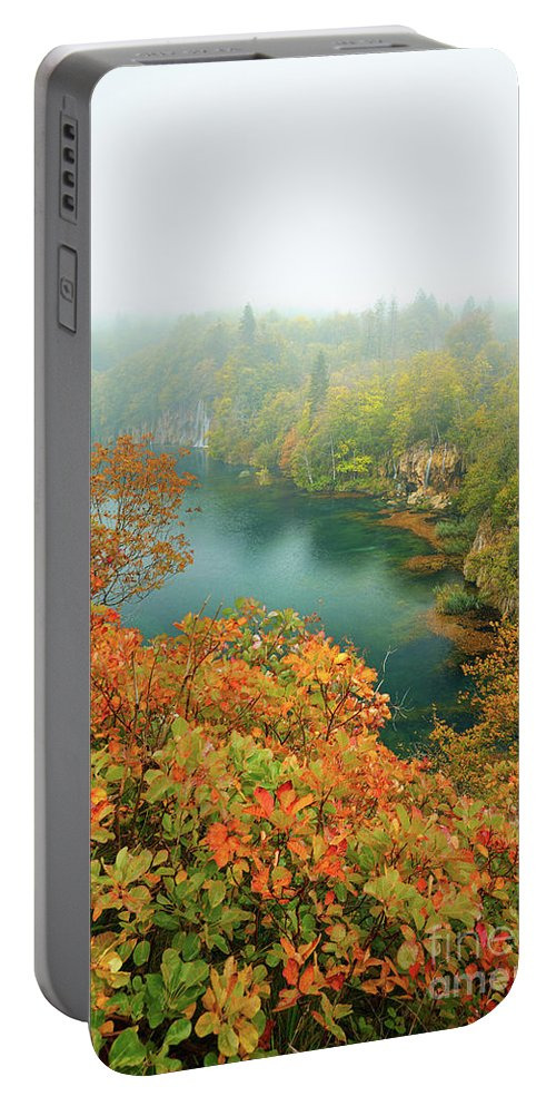 Indian Summer Portable Battery Charger featuring the photograph Misty Autumn by Silvio Schoisswohl