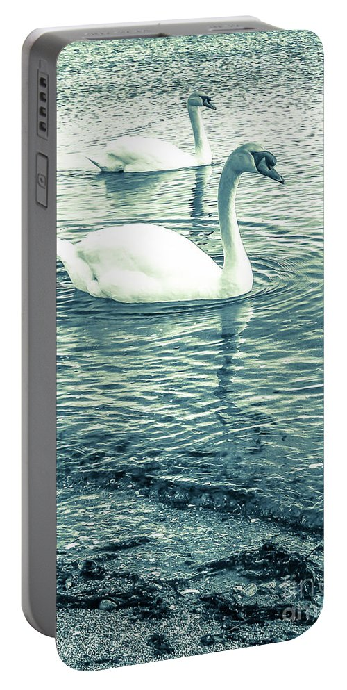 Mute Swan Portable Battery Charger featuring the photograph Misty Blue Swans by Lisa Kilby