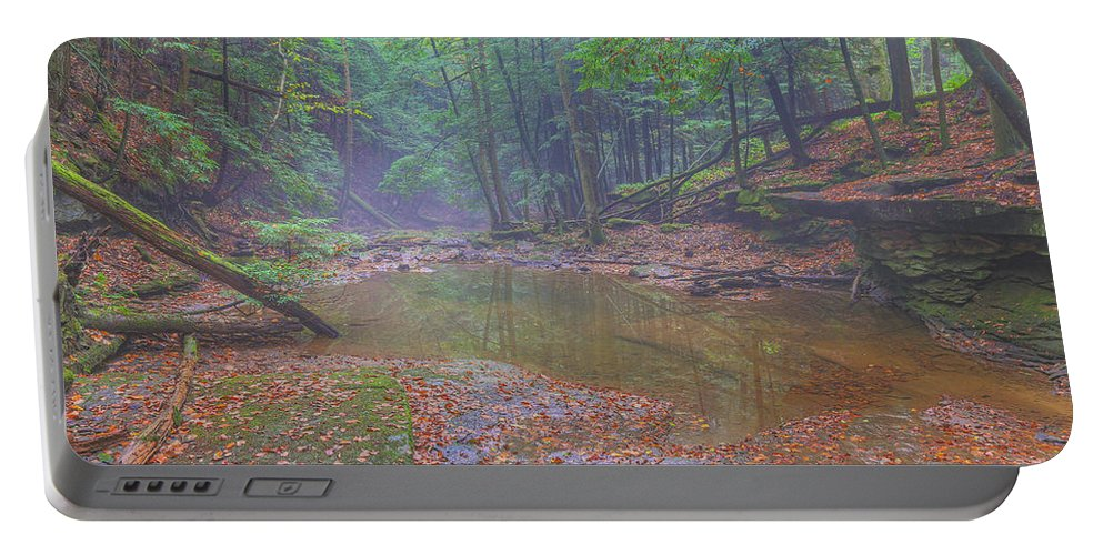 Misty Morning Woodscape Portable Battery Charger featuring the digital art Misty Morning Woodscape Two by Randy Steele