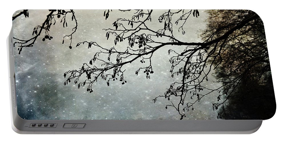 Blue Portable Battery Charger featuring the photograph Misty Tide by Randi Grace Nilsberg