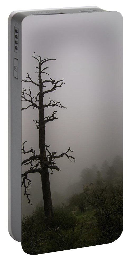 Landscape Portable Battery Charger featuring the photograph Misty Tree by Rob Lantz