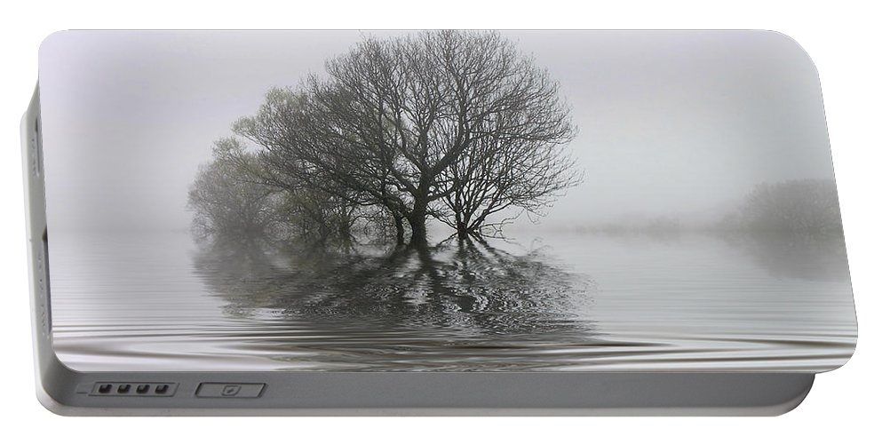 Trees Portable Battery Charger featuring the photograph Misty Wetlands by Rob Lester
