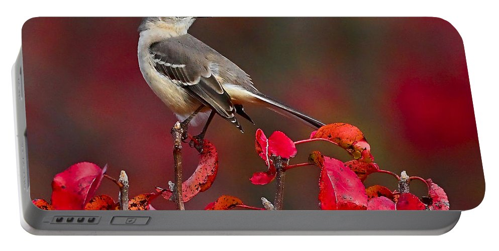 Mockingbird Portable Battery Charger featuring the photograph Mockingbird On Red by William Jobes