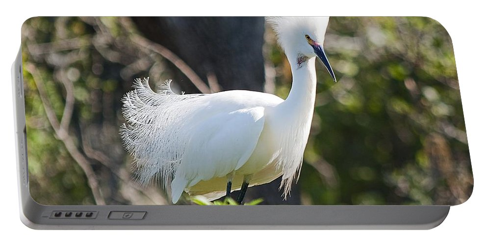 Egret Portable Battery Charger featuring the photograph Mohawk by Kenneth Albin