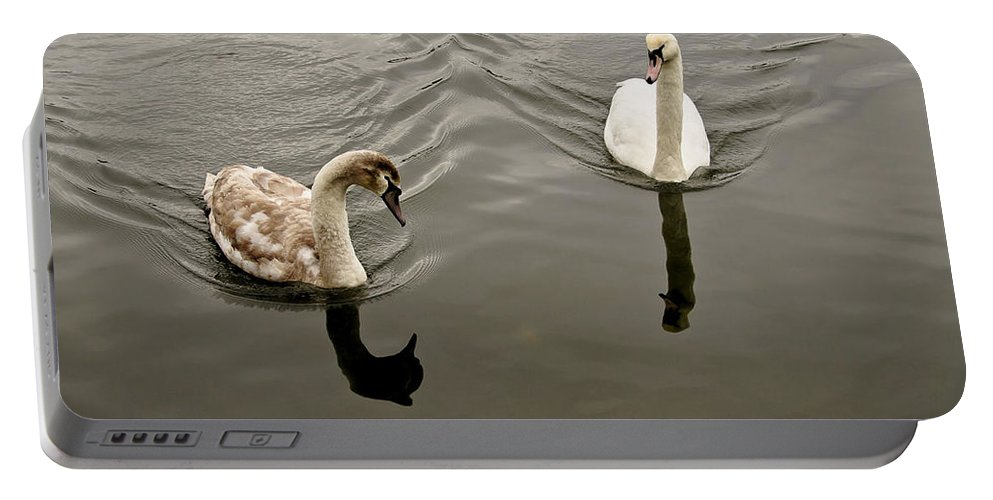 Swan Portable Battery Charger featuring the photograph Mom Is In A Bad Mood. by Elena Perelman