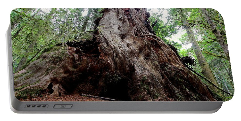 Travel Portable Battery Charger featuring the photograph Moments In Time Trail by Nicholas Miller