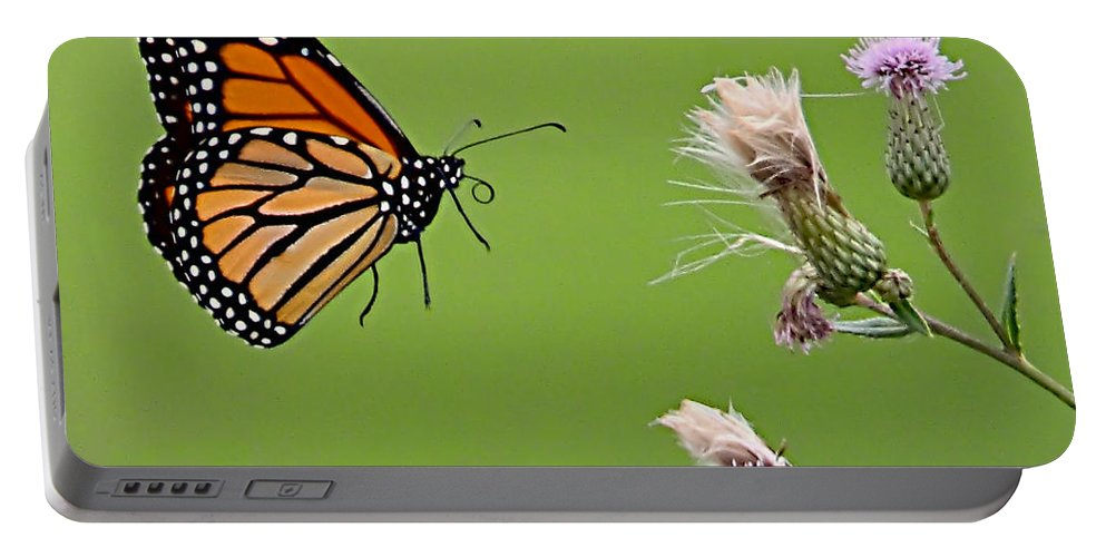 Butterfly Portable Battery Charger featuring the photograph Monarch Butterfly by William Jobes