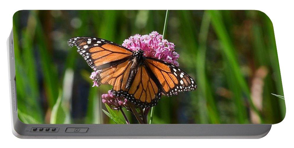 Butterflies Portable Battery Charger featuring the photograph Monarch On Joe Pye by Hella Buchheim