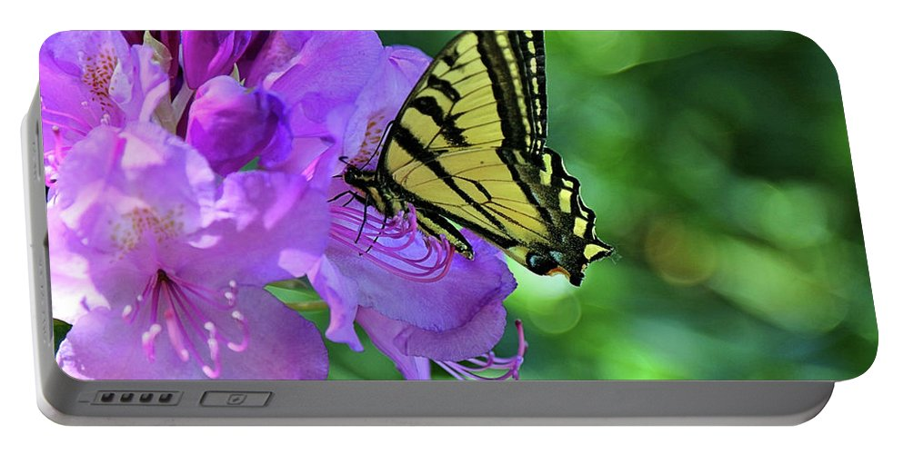 Pink Flower With Monarch Portable Battery Charger featuring the photograph Monarch by Rosalyn Zacha