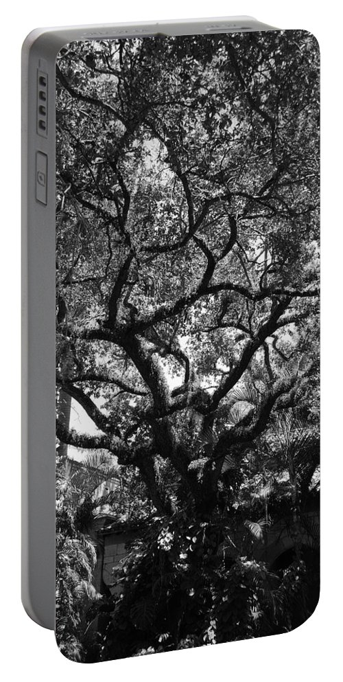 Black And White Portable Battery Charger featuring the photograph Monastery Tree by Rob Hans