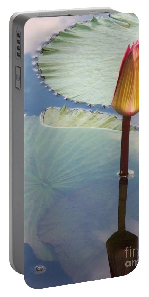 Photograph Portable Battery Charger featuring the photograph Monet Water Lily Stem Red Orange by Eric Schiabor
