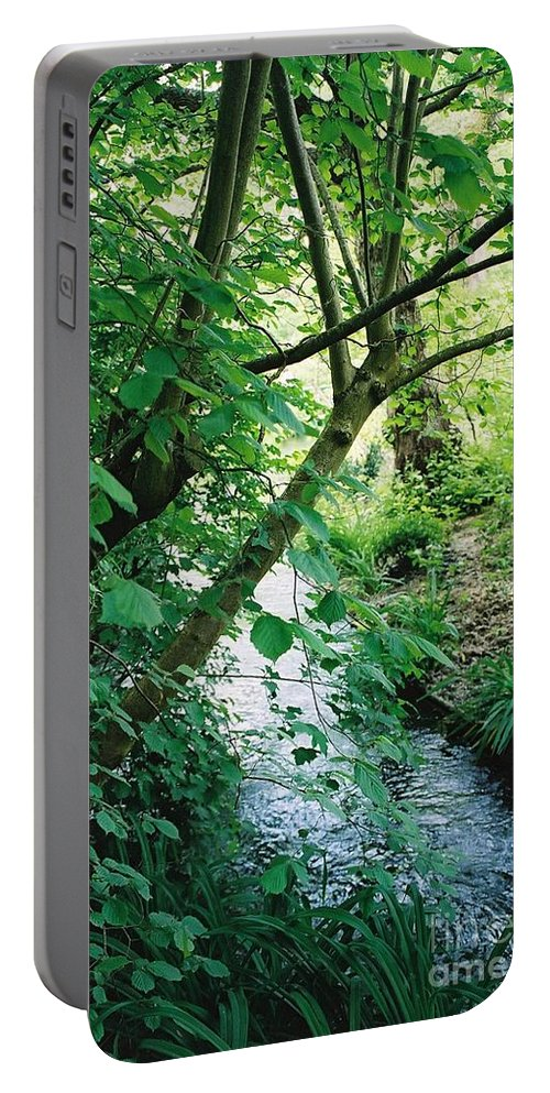 Photography Portable Battery Charger featuring the photograph Monet's Garden Stream by Nadine Rippelmeyer