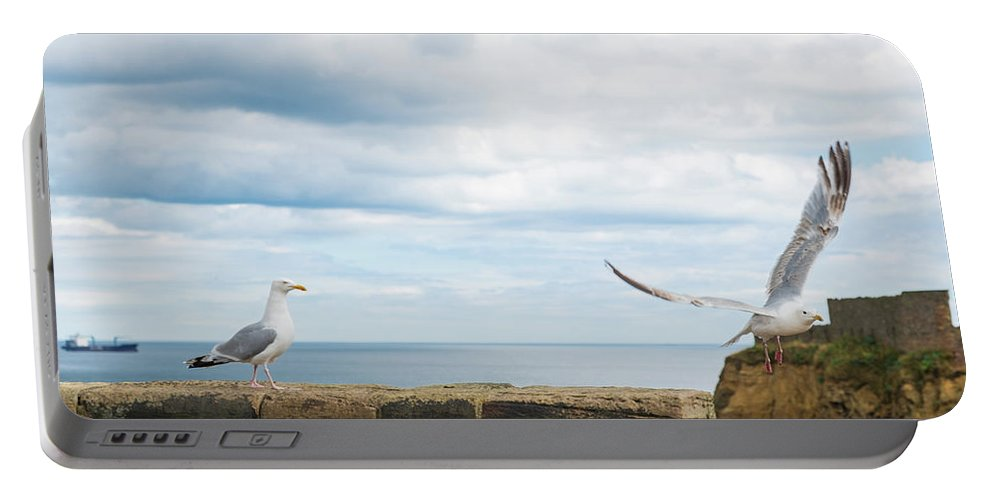 Bird Portable Battery Charger featuring the photograph Monitored Seagull Take-off by Iordanis Pallikaras