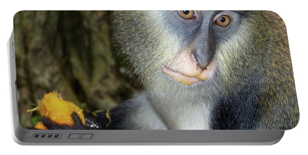 Monkey Portable Battery Charger featuring the photograph Monkey With His Mango by Jamie Johnson