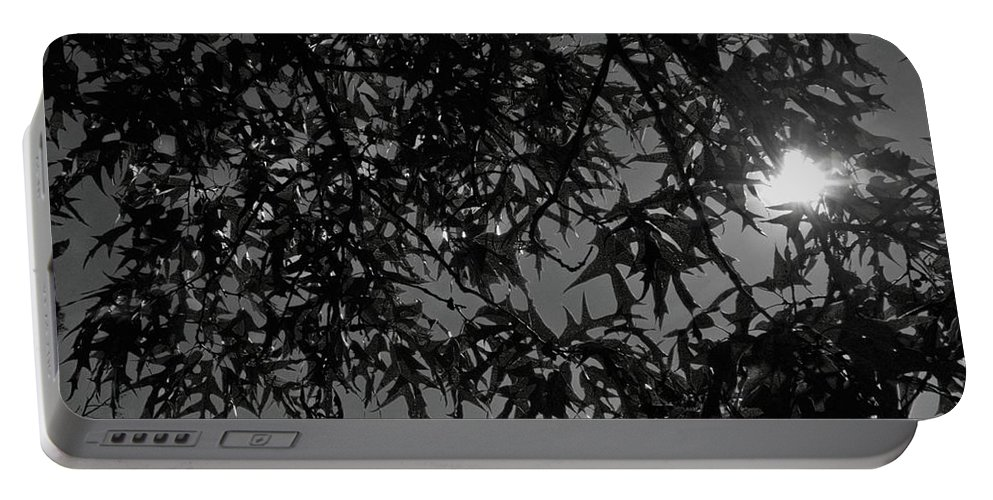 Moon Portable Battery Charger featuring the photograph Moonlight by Betty Northcutt