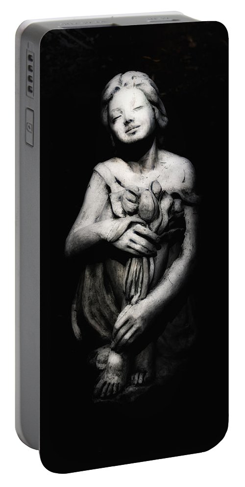 Moonlight Portable Battery Charger featuring the photograph Moonlight Night by Bill Cannon