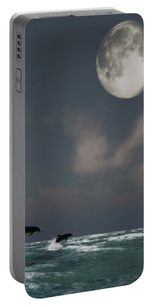 Oceans Portable Battery Charger featuring the digital art Moonlight Swim by Richard Rizzo