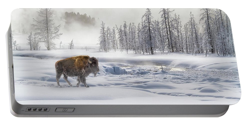 Yellowstone Portable Battery Charger featuring the photograph Morning Bison 4 7912-4 by Karen Celella