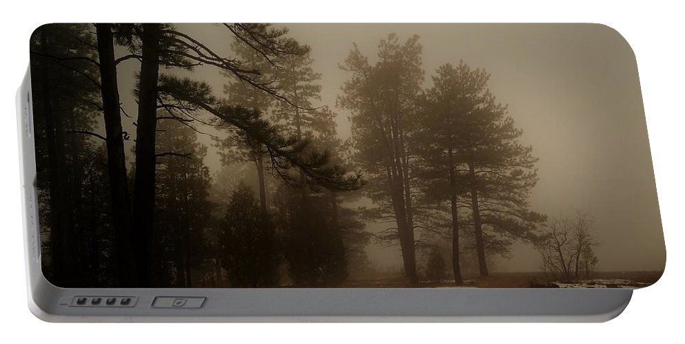 Scenery Portable Battery Charger featuring the photograph Morning Fog by Broderick Delaney