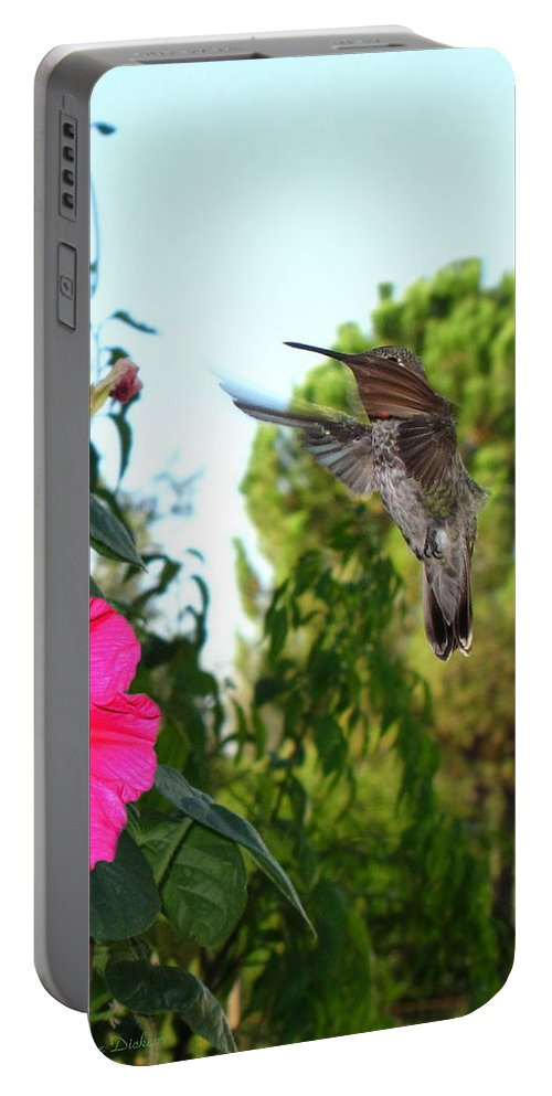 Bird Portable Battery Charger featuring the photograph Morning Glories And Humming Bird by Joyce Dickens