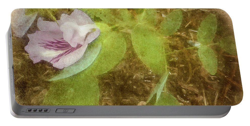Square Portable Battery Charger featuring the photograph Morning Glory by Robert Meyerson