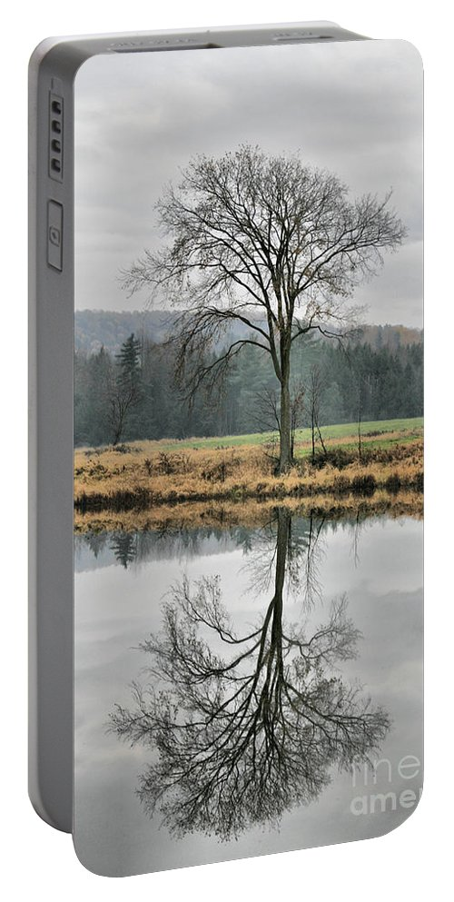 Reflections Portable Battery Charger featuring the photograph Morning Haze And Reflections by Deborah Benoit