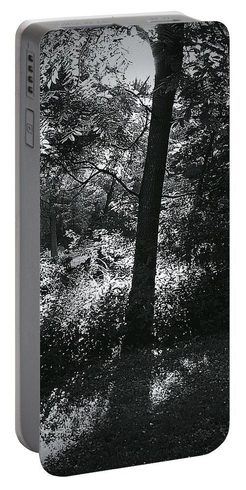 Frank J Casella Portable Battery Charger featuring the photograph Morning Warm Up by Frank J Casella