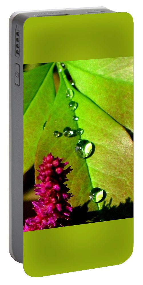 Floral Portable Battery Charger featuring the photograph Morning's Glory by Marla McFall