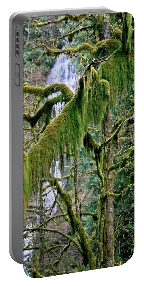 Moss Portable Battery Charger featuring the photograph Moss At Munson Creek by Albert Seger