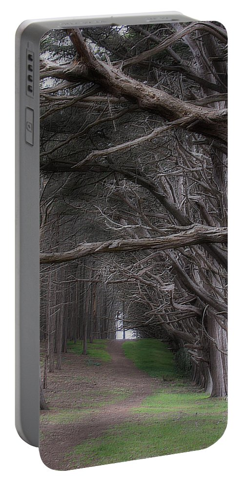 Landscape Portable Battery Charger featuring the photograph Moss Beach Trees 4191 by Karen W Meyer